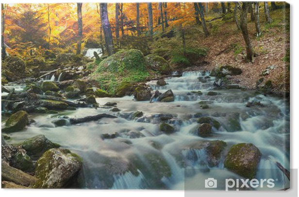 Forest waterfall Canvas Print - Themes
