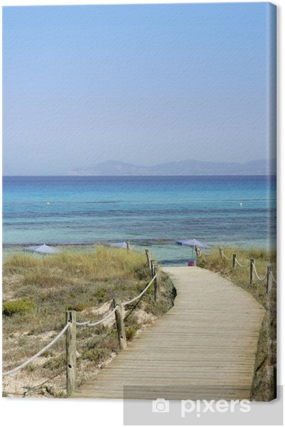 Formentera island near Ibiza in Mediterranean Canvas Print - Water