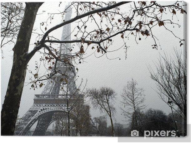 France Paris trocadero under snow Canvas Print - Themes