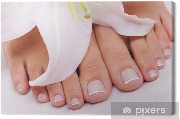 French pedicure on a female feet Canvas Print - Lifestyle>Body Care and Beauty