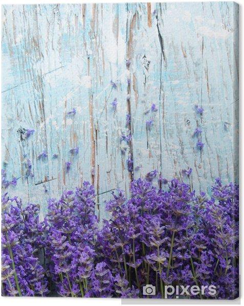 Fresh lavender on wood Canvas Print - Themes