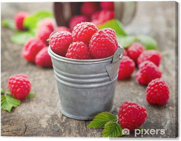 Fresh raspberry Canvas Print - Raspberries
