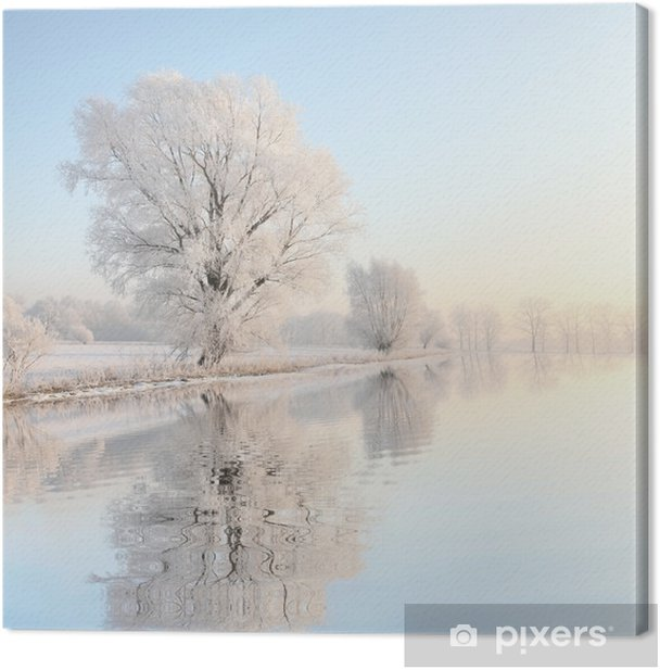 Frosty winter tree against a blue sky with reflection in water Canvas Print - Styles