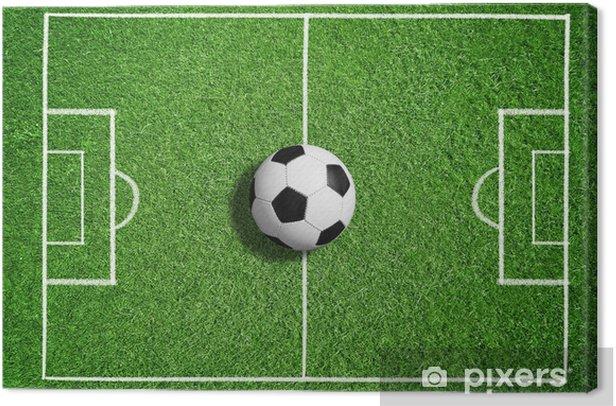 Fussball Auf Dem Spielfeld Canvas Print