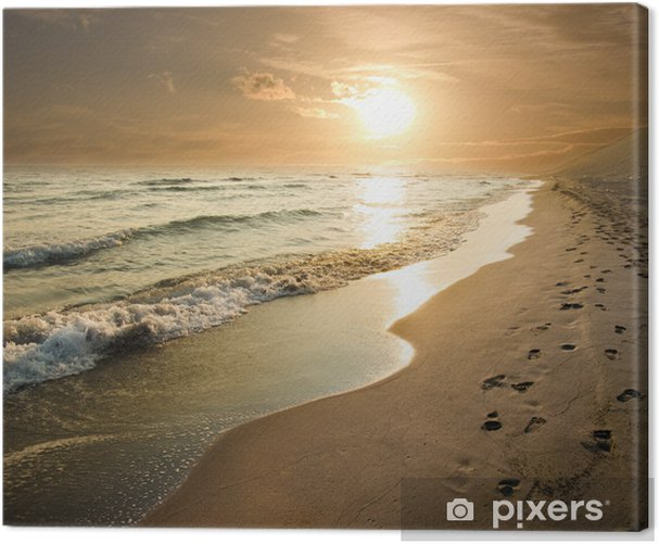 Golden Sunset On The Sea Shore Canvas Print - Themes