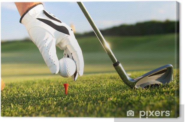 golf tee Canvas Print - Golf