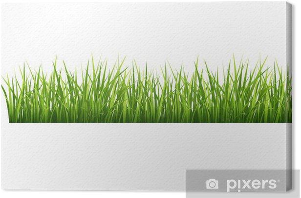 Grass Canvas Print - Seasons