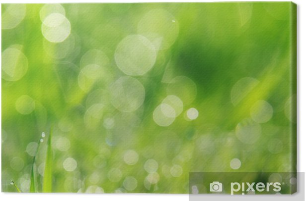 grass Canvas Print - Seasons