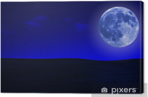 Grassy hills at night with a bright full moon Canvas Print - Countryside