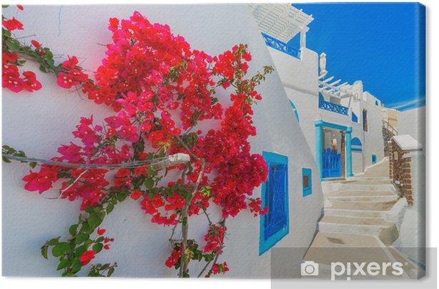 Greece Santorini island in Cyclades, traditional view of white w Canvas Print - Themes