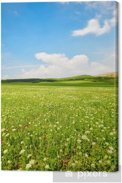green grass Canvas Print - Plants
