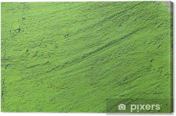 669f693a917 green grunge cement background. greenery