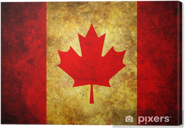 Grunge Canada Flag Canvas Print Pixers We Live To Change