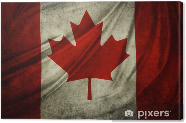 Grunge Canadian Flag Canvas Print Pixers We Live To Change