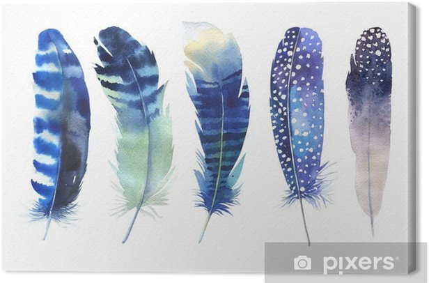 Hand drawn watercolor feather set. Boho style. Watercolour illustration Canvas Print - Animals