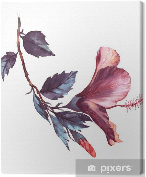 Hand Drawn Watercolor Floral Illustration Of The Tender White With