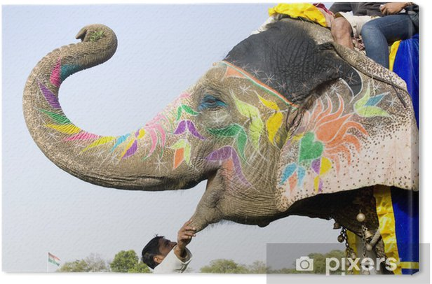 hand painted colorful elephant profile, Rajasthan, India Canvas Print - Mammals