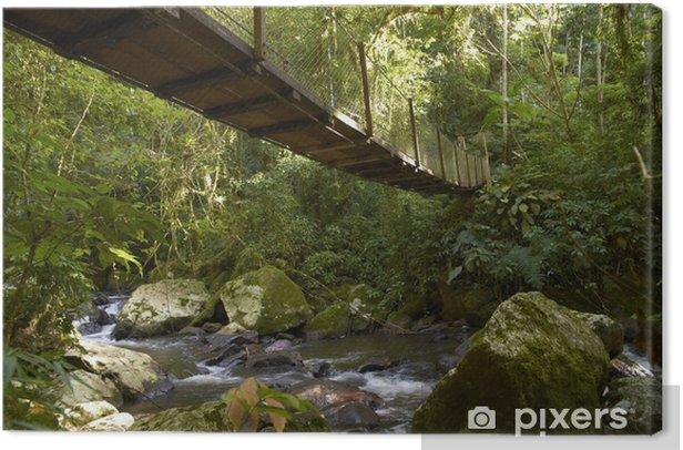 Hängebrücke im Regenwald Canvas Print - Outdoor Sports