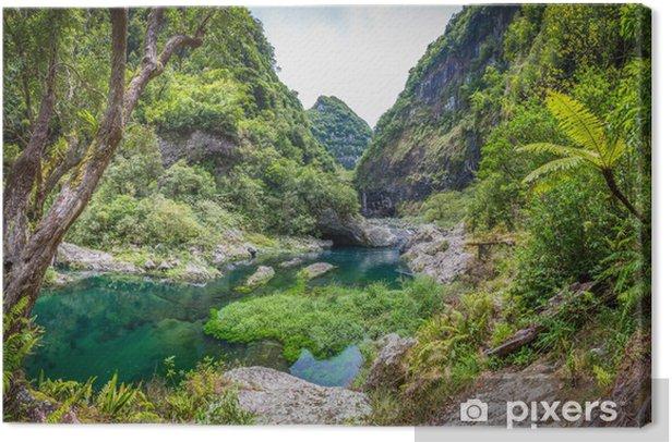 Hidden Paradise, Takamaka, La Réunion Canvas Print - Themes