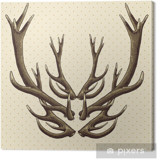 Hipster vintage background with deer antlers Canvas Print - Signs and Symbols