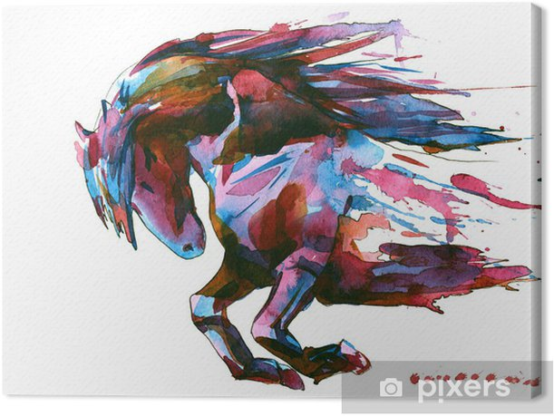horse Canvas Print - Wall decals