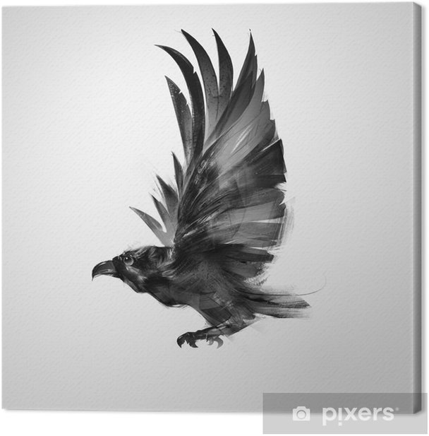 isolated graphically flying bird black crow Canvas Print - Animals