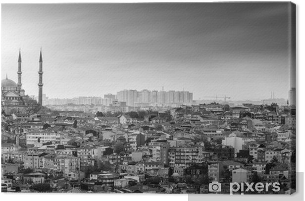 Istanbul Mosque with residential area in black and white Canvas Print - The Middle East
