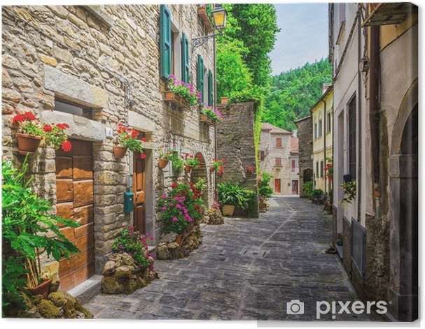 Italian street in a small provincial town of Tuscan Canvas Print - Themes