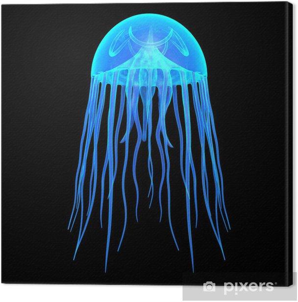 Jellyfish Canvas Print - Aquatic and Marine Life