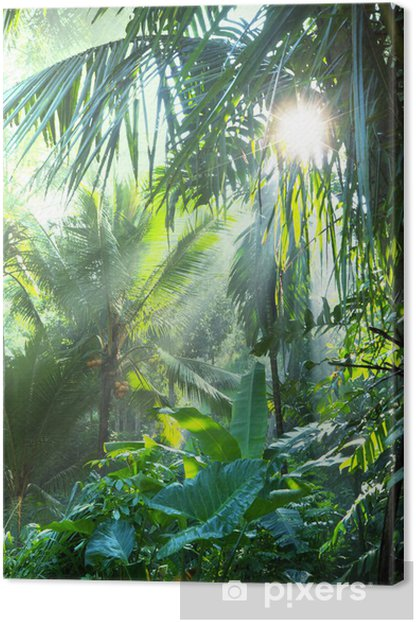 Jungle Canvas Print - Themes