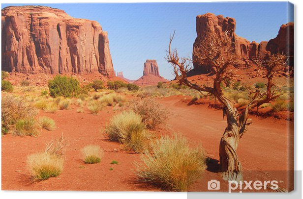 Large rock formations in the Navajo park Monument Valley Canvas Print - Themes