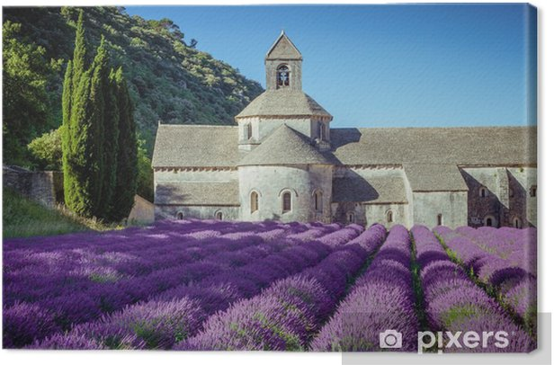 Lavender in front of the old abbey of Senanque in Provence Canvas Print - Landscapes
