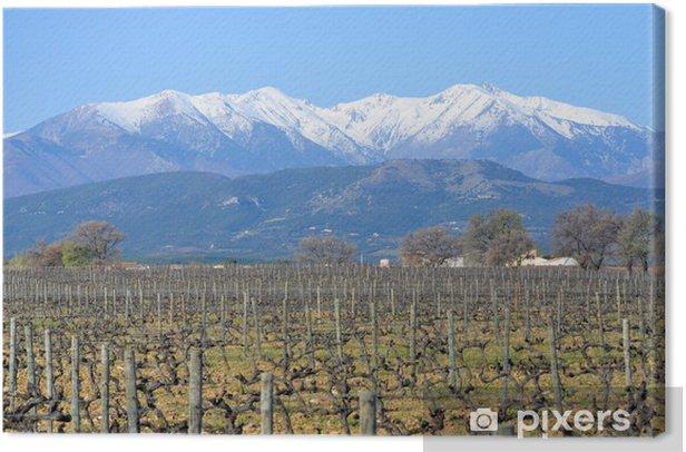 Le Canigou dans les Pyrénées Orientales Canvas Print - Seasons