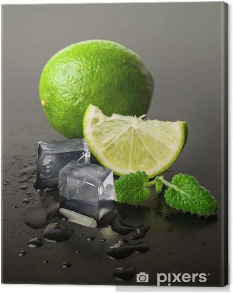 lime and mint with ice cubes Canvas Print - Meals