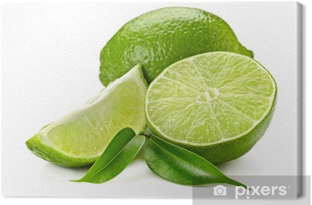 lime Canvas Print - Fruit