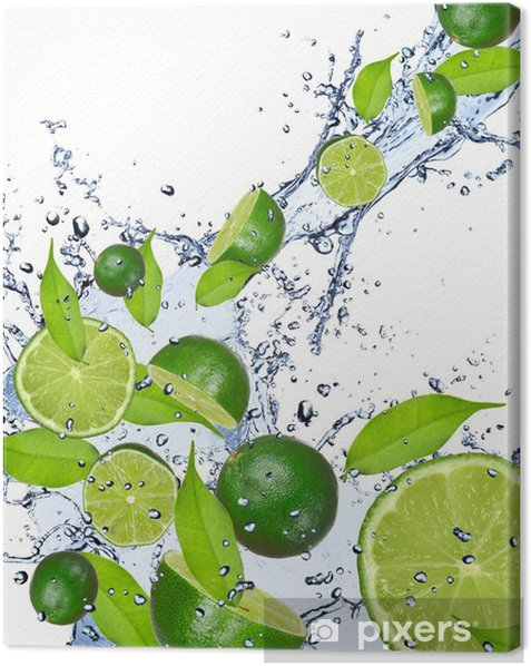 Limes falling in water splash, isolated on white background Canvas Print - Destinations