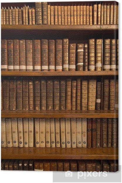 Livres dans une bibliothèque Canvas Print - Library