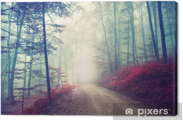 Magical forest path Canvas Print - Forest