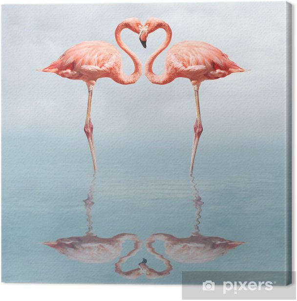 making love Canvas Print - Flamingos