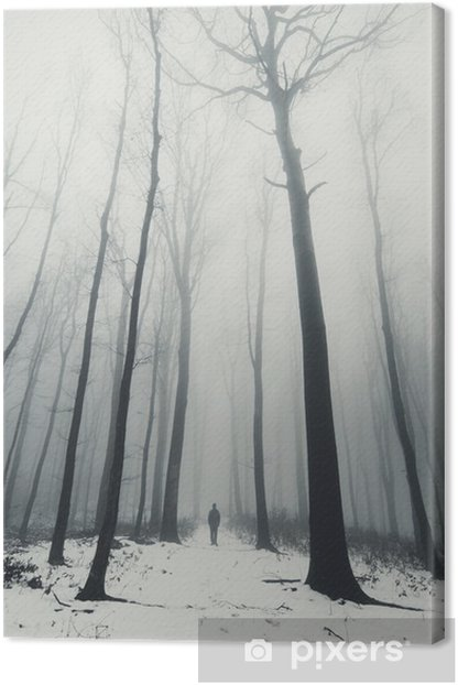 man in forest with tall trees in winter Canvas Print - Landscapes