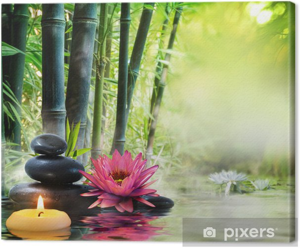 massage in nature - lily, stones, bamboo - zen concept Canvas Print - Styles