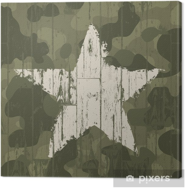 Military camouflage background with star. Vector, EPS10. Canvas Print - Themes