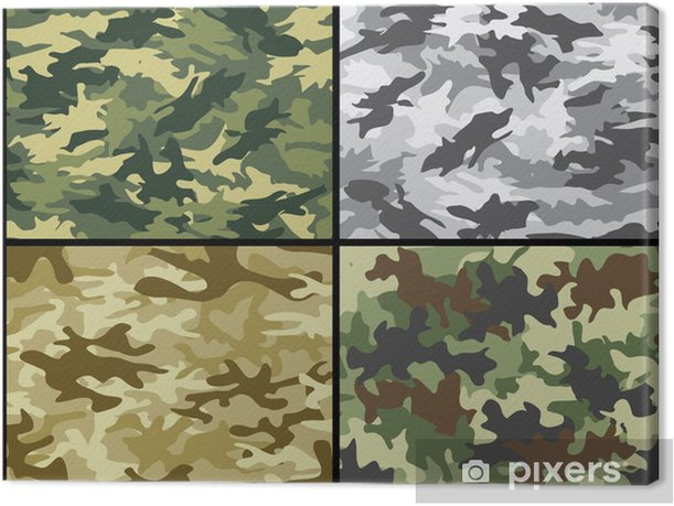 Military camouflage patterns Canvas Print