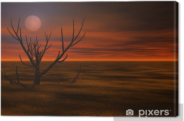 Misty 3d night landscape Canvas Print - Other Feelings