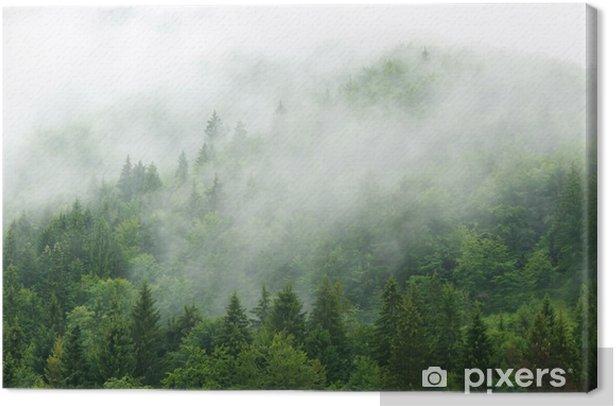 Misty forest Canvas Print - Landscapes