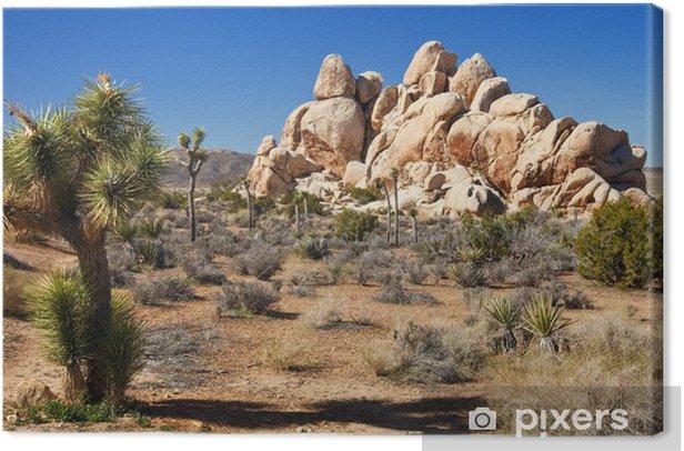 Mojave Desert Panorama Canvas Print - Deserts