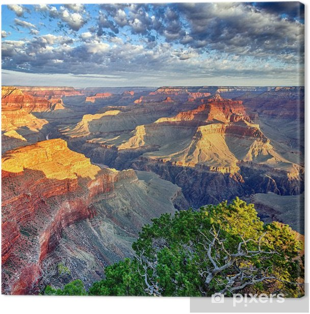 Morning light at the Grand Canyon Canvas Print - Themes
