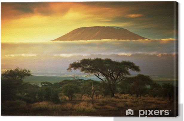 Mount Kilimanjaro. Savanna in Amboseli, Kenya Canvas Print - Themes