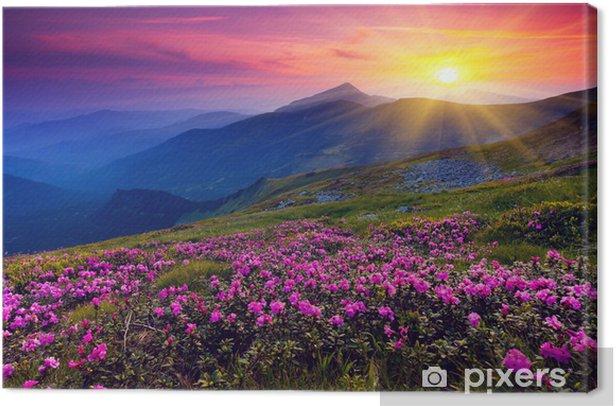 Mountain landscape with purple floweres Canvas Print - Themes