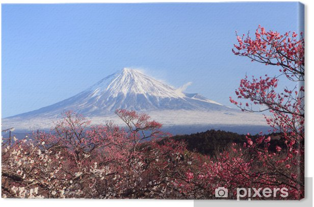 Mt. Fuji with Japanese Plum Blossoms Canvas Print - Themes